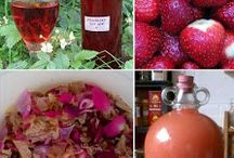 homemade wine and other kinds of drink recipes