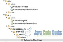 Java WS