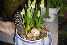 gibsons florist