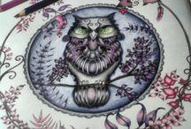Pintando o sete!!! / Idéias para colorir o Jardim secreto e floresta encantada