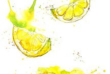 Food watercolor illustrations