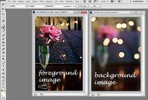Photography Info