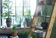 Inside living spaces