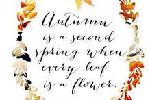 Seasonality