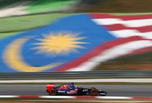 2014 MALAYSIAN GRAND PRIX / 2014 Malaysian Grand Prix, Kuala Lumpur, Malaysia  #STR9 #GOTOROROSSO #MALAYSIANGP #F1