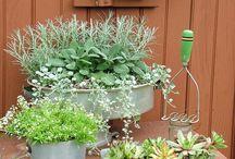 Plantering balkong