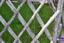 Farm Fences / Rolling fields and beautiful fences