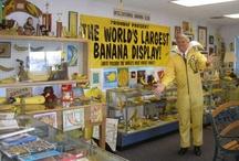 The Banana Club Museum