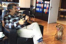 Ajanimo Röportaj / www.ajanimo.com'da yaptığımız röportajlara bu panodan ulaşabilirsiniz.