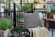 terrace,veranda