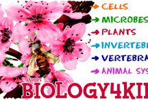 Biology Activities for Kids and Teens / Biology activities for children and teens.