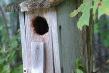 Bird house / Wood art