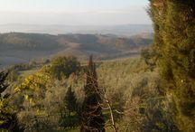 Colori di Toscana / Una regiome meravigliosa