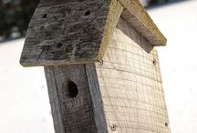 Bird feeders and houses