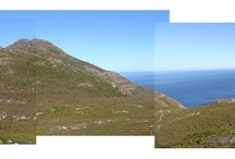 I walked and walked / Photos taken on our walks in the mountains around Cape Town / by Adri Schutz