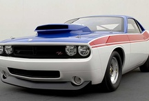 Muscle Cars / !