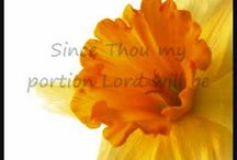 Sing / Youtube clips of sing-along songs to use in Bible time.