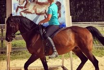 Art on Horseback - Sandra Beaulieu / Sandra Beaulieu is an equine artist and dressage rider that combines both of her passions into one. She paints from horseback, riding Rovandio, a 16 year old Andalusian/Lipizzan gelding that she has known since he was a foal. She rides him bitless and bareback during the process, using dressage movements like collected canter, half pass, pirouettes, reinback, and piaffe to land brushstrokes. Learn more at www.artonhorseback.com. <3