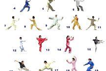 Yang tai chi 24 forms
