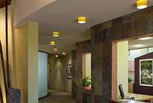 LifeScape Medical Associates / Medical clinic design, holistic healthcare and creative interior architecture are a trifecta in creating a patient experience that closely aligns with founder Dr. Susan Wilder's expectations.  Design by Jain Malkin Inc