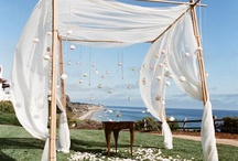Wedding ideas for when I do get married / by Megan Powell
