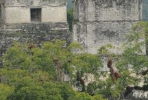The Riviera Maya, Caribbean and Central America - Our Travel photos and stories