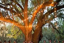 Romantic Weddings / Planning, fashion, and décor ideas for the special day