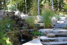 Landscaping Ideas / by Amy Roeske Basore