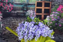 Spring Garden Decor / Decorate your garden and enjoy the spring breeze with the flowers scents passing your lawn.