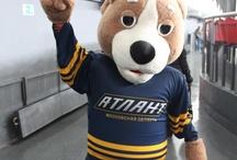 Mascots (Hockey)