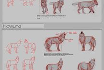 2d animal tutorials