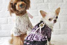 Dog Dresses, Pants, & Jumpsuits