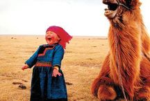 Photography - pictures that make me smile, cry and even yell out loud