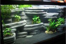 background fishtank
