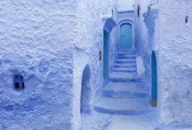 white&blue / 青と白