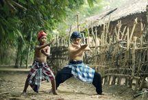 Pencak Silat / Indonesian martial art