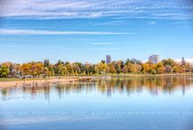 Sloans Lake Real Estate / Professional photographer shares stunning images of brilliant fall color in the Sloans Lake neighborhood. Find a home near these stunning trees and vistas.