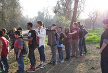 Outdoors education / SRT offers field trips to Kaweah Oaks and Dry Creek preserves for outdoors education and fun.