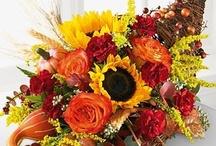 Kwiaty -  kompozycje