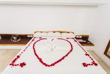 Love birds / We make sure you will never forget your honeymoon at Cabañas Tulum