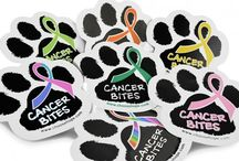 Cancer Awareness Products for Pets / Support Your Cat or Dog with These Pet Cancer Awareness Products / by Choose Hope
