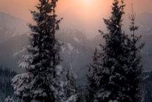 Зимушка-зима (картинки)