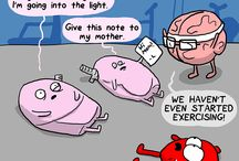 funny human anatomy
