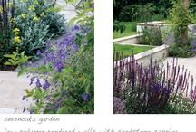 Family Town Garden / Rendered and capped walls, built in seating using western red cedar and gorgeous planting