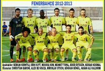 FENERBAHÇE SPOR KULÜBÜ 2010-2019