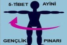 5 Tibet hareketi