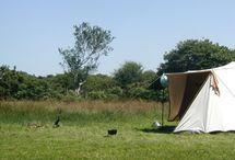 campings Engeland / by Jacomine Oosterhoff