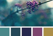 Barvy obývák