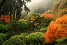 Japanese gardens / by Gillian Golding