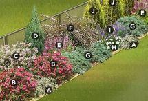 Zahrada zadna cast